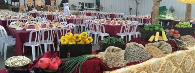 catering-teamim-of-mama (549)